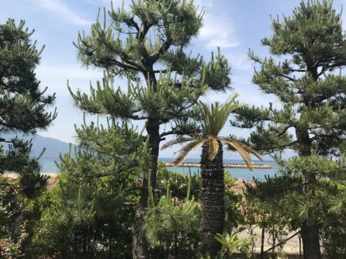 松島町(613.89 坪)